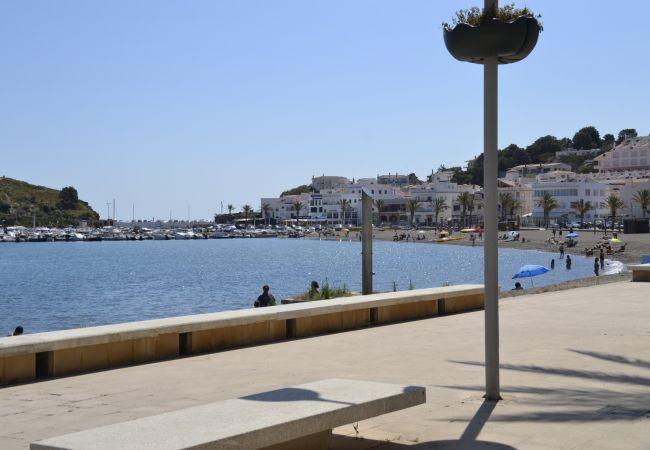 Apartament en Llança - 046 Platja Grifeu Ondina
